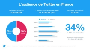 usage réseau social twitter
